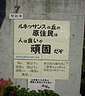 011011_rena.jpg