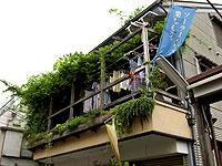 040717_hikiwatashi.jpg