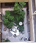 飛高堂中庭
